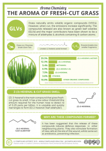 Aroma-Chemistry-The-Smell-of-Fresh-Cut-Grass